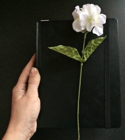 biblejournal
